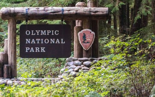 Olympic National Park, Washington Green Wonderland