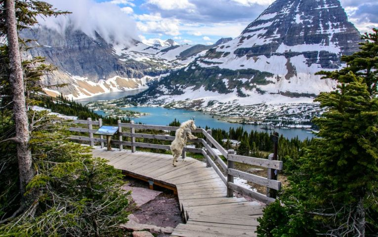 Ultimate Itinerary Guides Glacier National Park